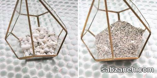 گلدان های شیشه ای برای ساخت تراریوم