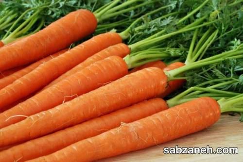 آشنایی با مراحل کاشت هویج در منزل