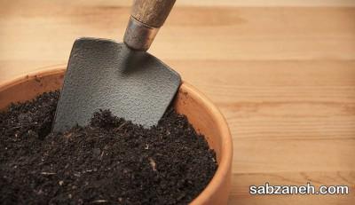 خاک گلدان برای رشد گیاه