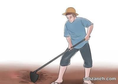 خاک مناسب برای پرورش بادام زمینی