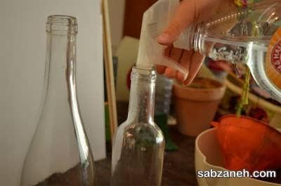 نحوه آبیاری گیاه در بطری شیشه ای