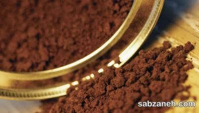 پرورش گیاه قهوه