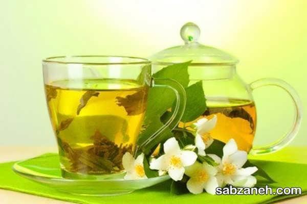 نحوه کشت و فرآوری چای سبز