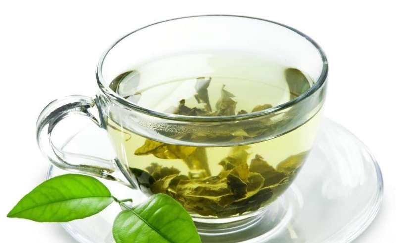 نحوه کاشت چای سبز و فرآوری آن