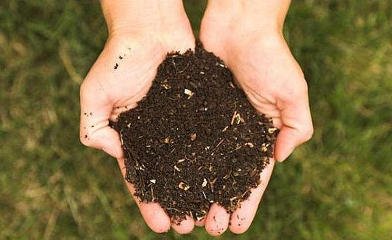 نحوه تهیه کود با خاک اره