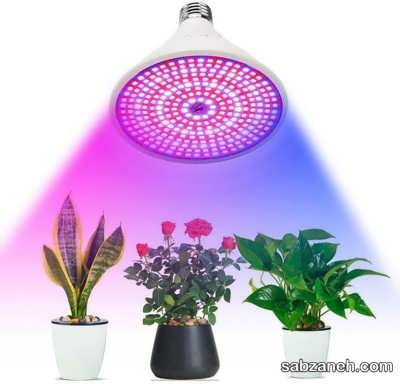 لامپ برای گیاهان